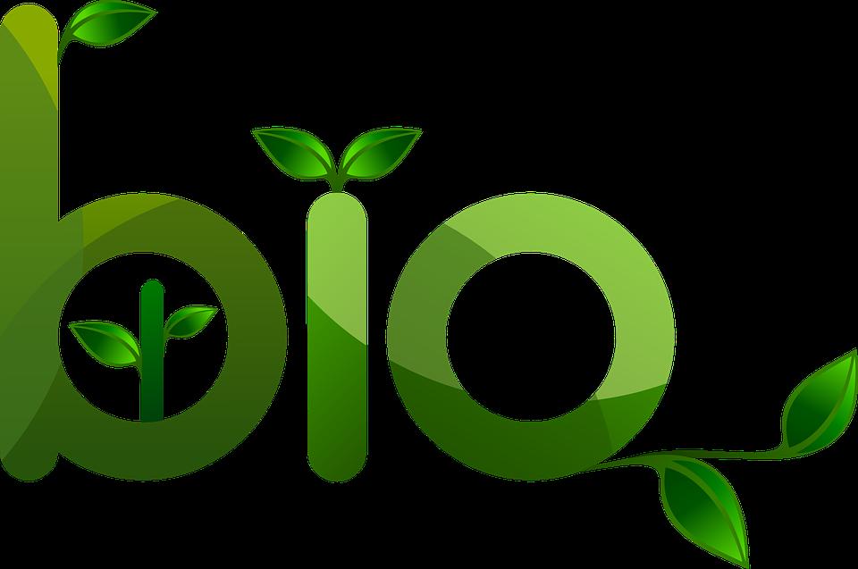 Révision du réglement Bio